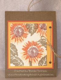 Bio_swap_double_slider_sunflower__2