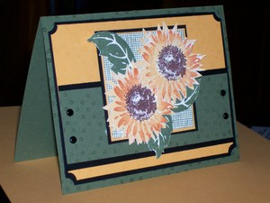 Sc110_marigold_and_artichoke_sunflowers_